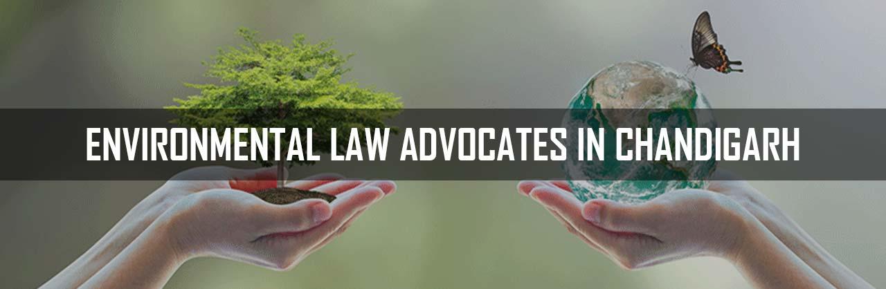 Environmental Law Advocates in Chandigarh