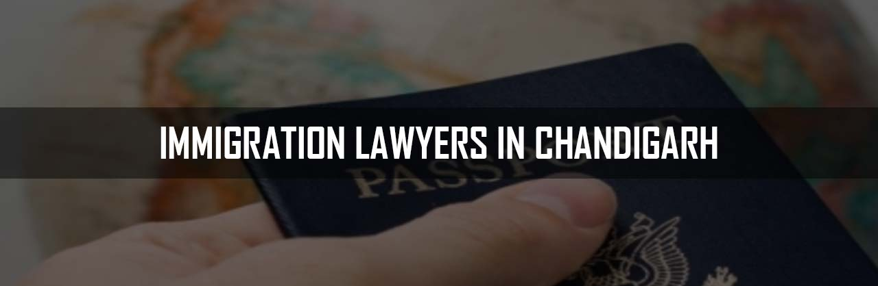 Immigration Lawyers in Chandigarh