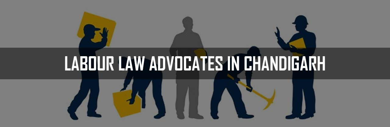 Labour law advocates in Chandigarh